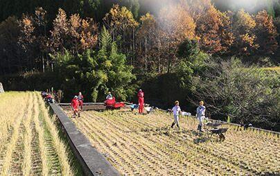 日本の棚田百選・福岡県東峰村で農地復旧のボランティア活動を行いました